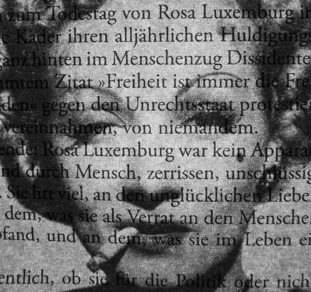 """""""rosa dietrich"""", textportrait 2014 (Bildausschnitt)"""
